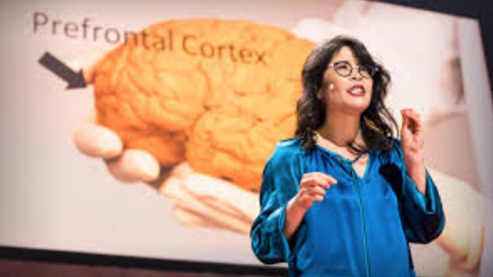 Neuro-scientist Wendy Suzuki on the brain-changing benefits of exercise.
